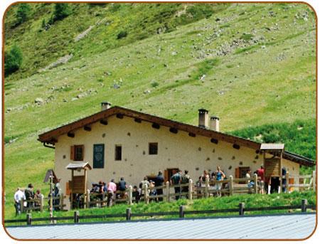 Alpe Mine-Livigno-Foto
