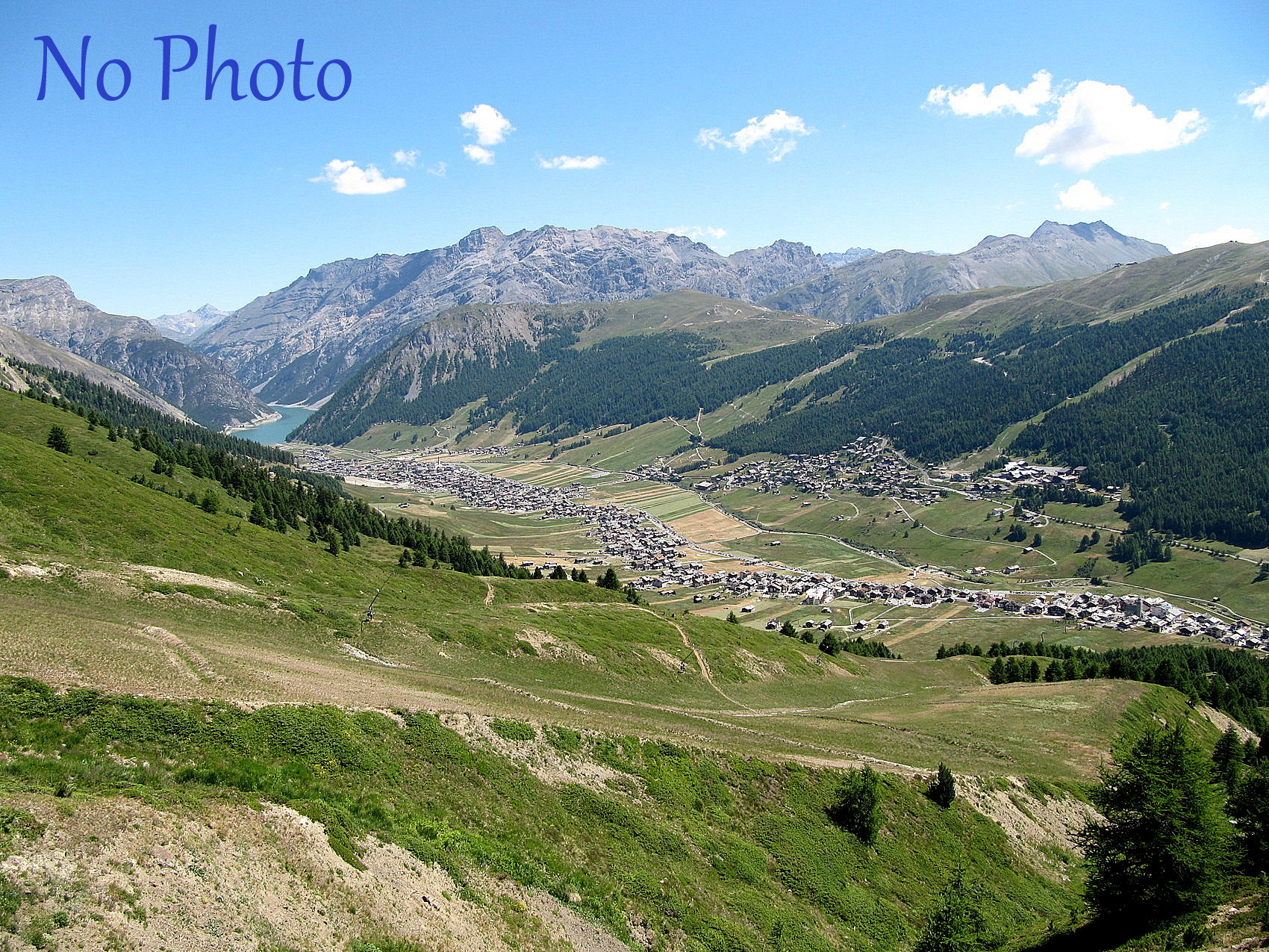 Green Rose-Livigno-Foto